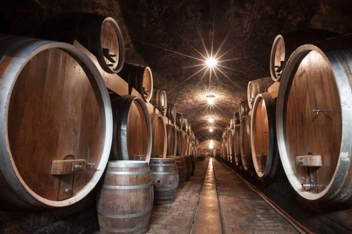 Iločka graševina proglašena hrvatskim viteškim vinom